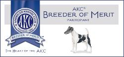 High Mtn Everso Smooth Fox Terrier's - AKC Breeder of Merit-Smooth Fox Terriers